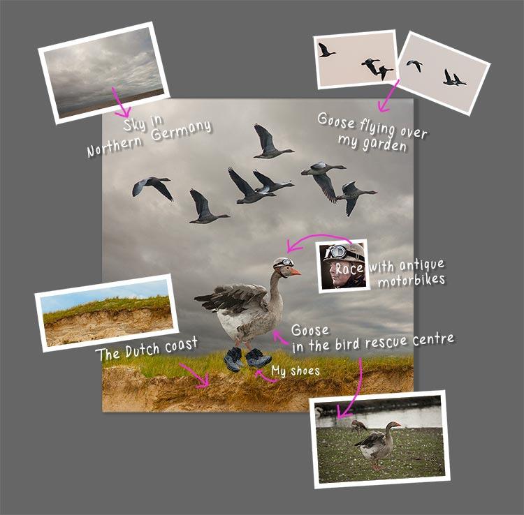 Wondrous-Goose-How-to-make-the-surreal-animal-art-(2)