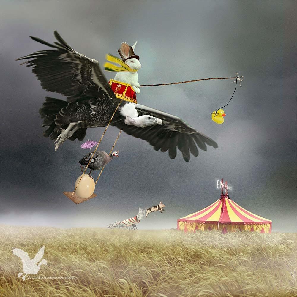Limited prints-Circus Poggibonsi