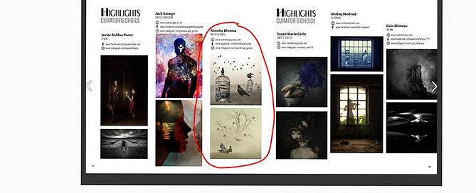 Wondrous-Goose-curators-choice-Photographize