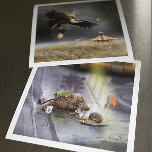 Wondrous-Goose-uses-Hahnemuhle-Fine-Art-Print-paper