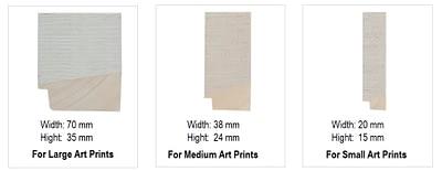 Options white wooden frame for Wondrousgoose fine art print
