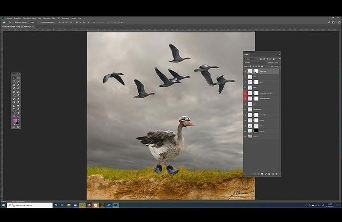 The Walking Goose